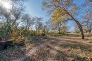 9018 N FM 1174 300 acres of land for sale in Burnet, TX trees