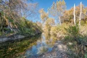 9018 N FM 1174 300 acres of land for sale in Burnet, TX creek and trees