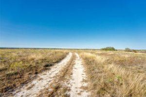 dirt road at 9018 N FM 1174 300 acres of land for sale in Burnet, TX