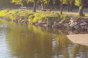 Picnic area on Lake Buchanan in Burnet, TX