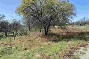 Residential land for sale in Buchanan Dam, TX